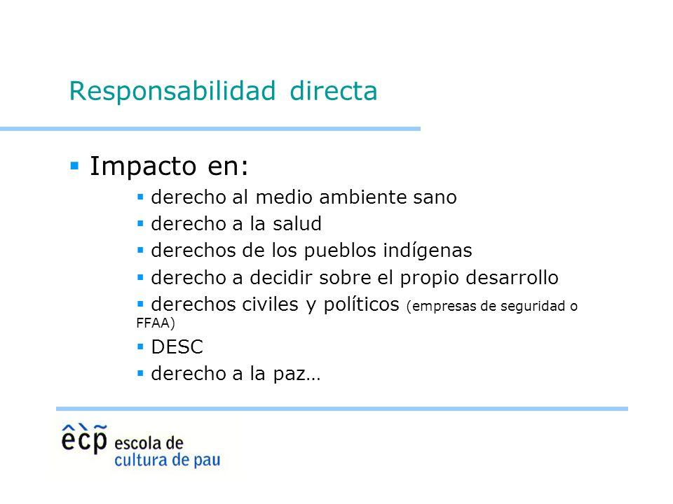 Responsabilidad directa Impacto en: derecho al medio ambiente sano derecho a la salud derechos de los pueblos indígenas derecho a decidir sobre el pro