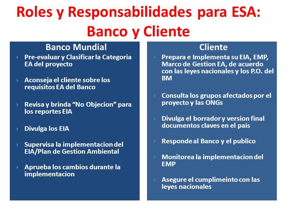 Banco Mundial Pre-evaluar y Clasificar la Categoria EA del proyecto Aconseja el cliente sobre los requisitos EA del Banco Revisa y brinda No Objecion