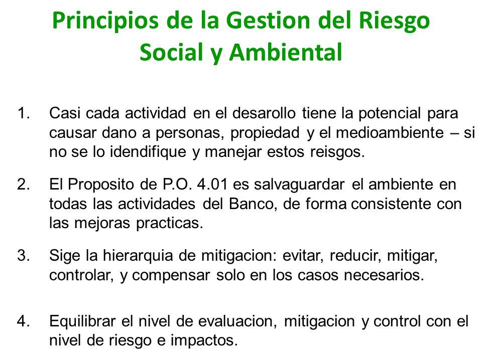 6 Principios 1.El manejo del riesgo ambiental debe efectuarse durante todo el ciclo de Proyecto (desde su concepción hasta su abandono o desmantelamiento).