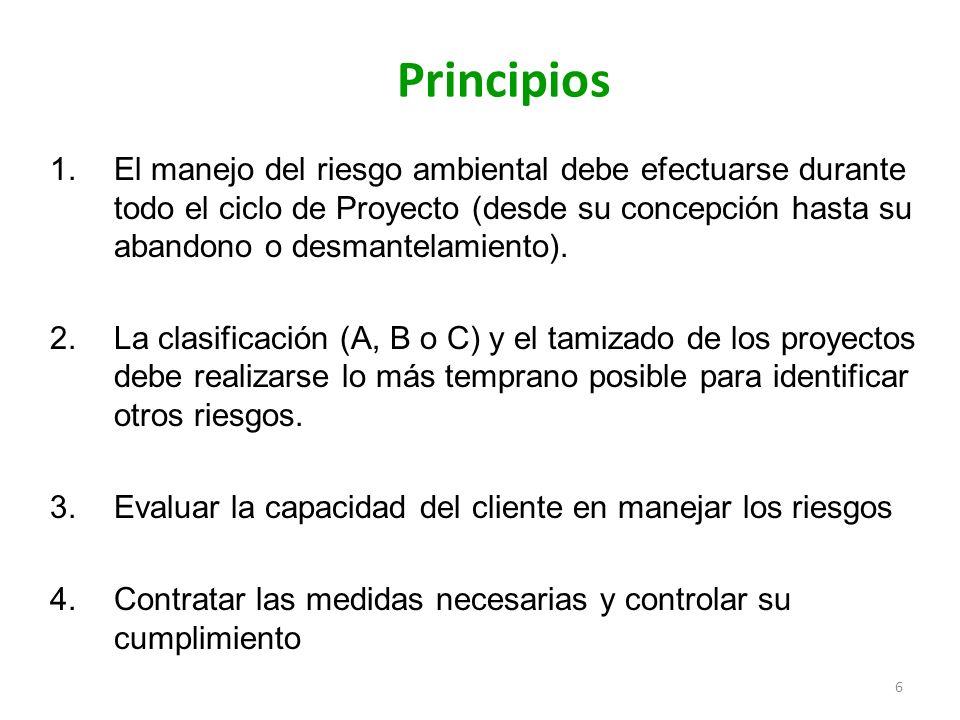6 Principios 1.El manejo del riesgo ambiental debe efectuarse durante todo el ciclo de Proyecto (desde su concepción hasta su abandono o desmantelamie