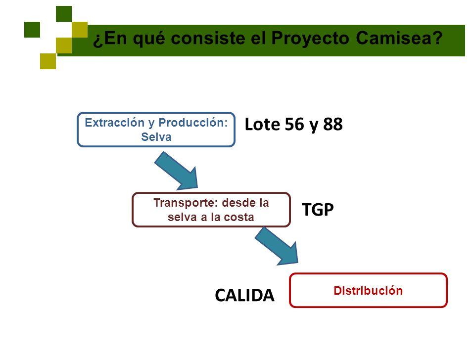 ¿En qué consiste el Proyecto Camisea? Lote 56 y 88 TGP CALIDA Extracción y Producción: Selva Transporte: desde la selva a la costa Distribución