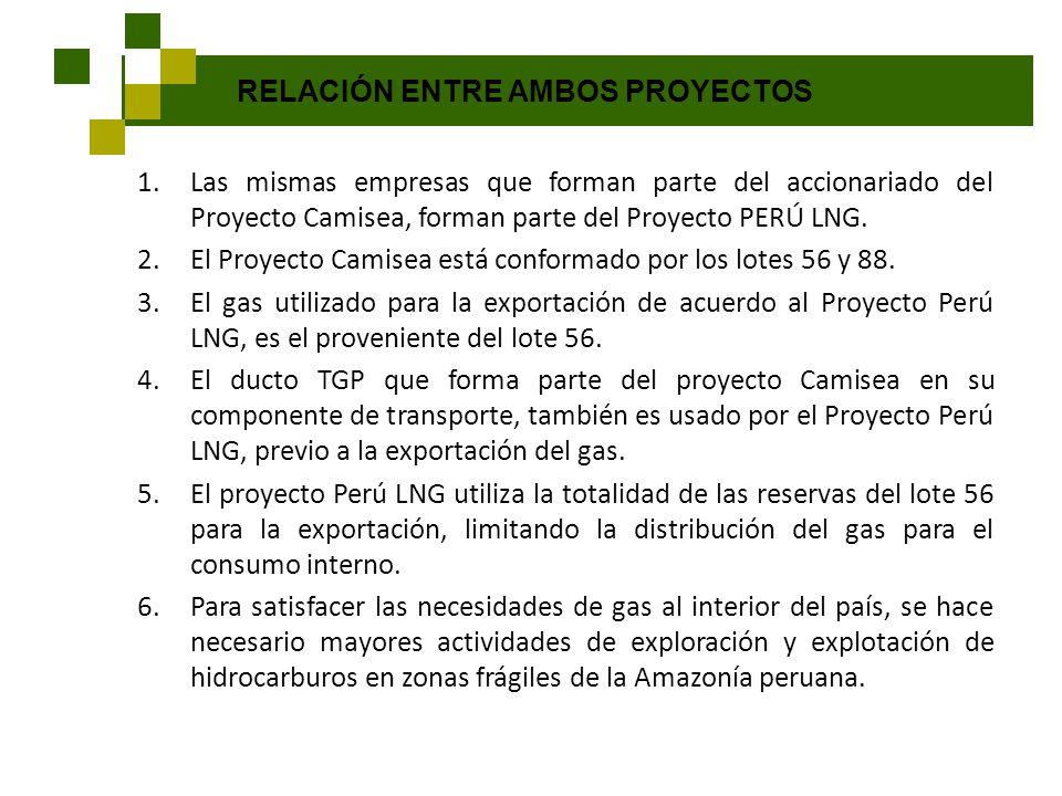 RELACIÓN ENTRE AMBOS PROYECTOS 1.Las mismas empresas que forman parte del accionariado del Proyecto Camisea, forman parte del Proyecto PERÚ LNG. 2.El