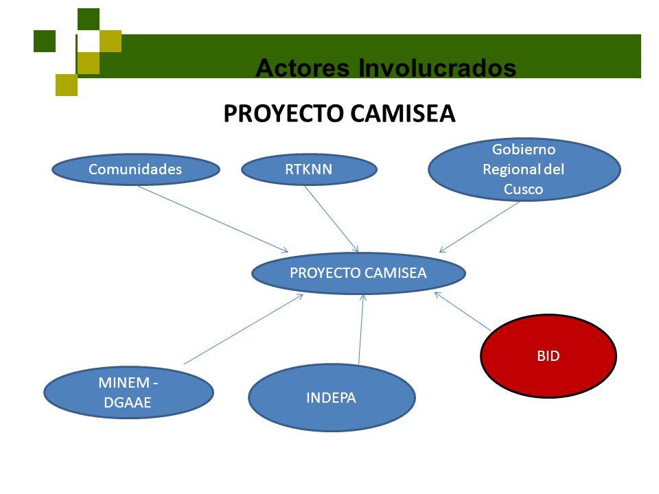 Actores Involucrados PROYECTO CAMISEA ComunidadesRTKNN Gobierno Regional del Cusco MINEM - DGAAE INDEPA BID