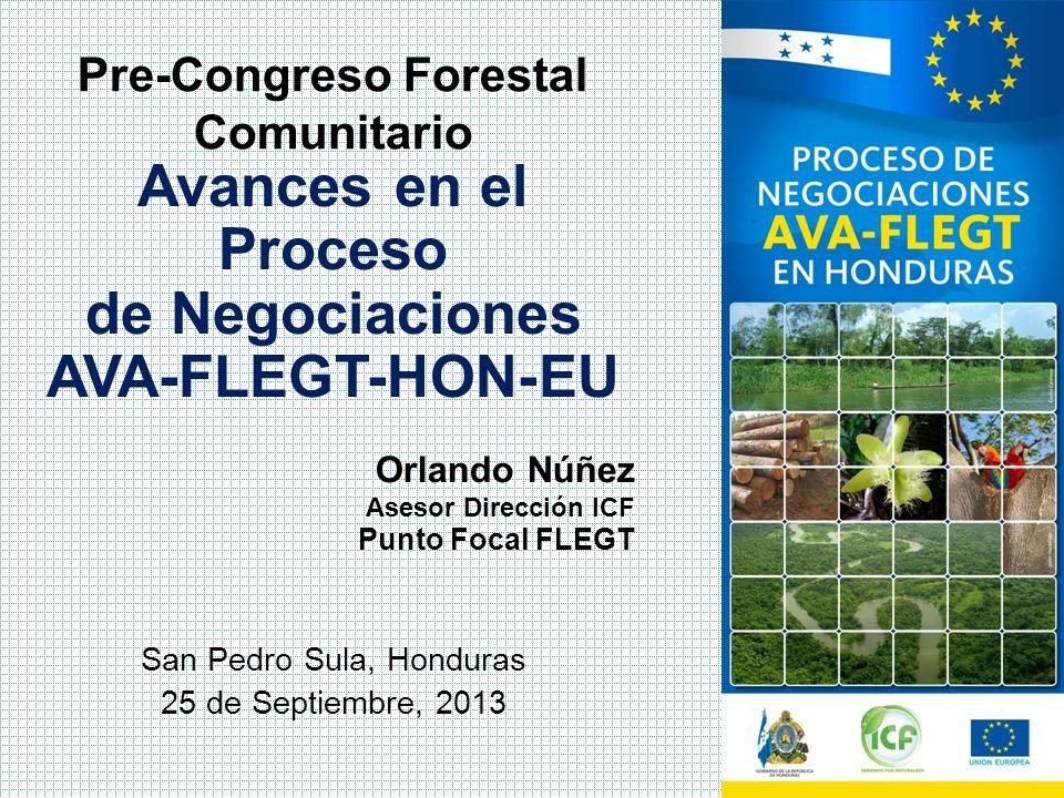 Avances en el Proceso de Negociaciones AVA-FLEGT-HON-EU San Pedro Sula, Honduras 25 de Septiembre, 2013 Orlando Núñez Asesor Dirección ICF Punto Focal