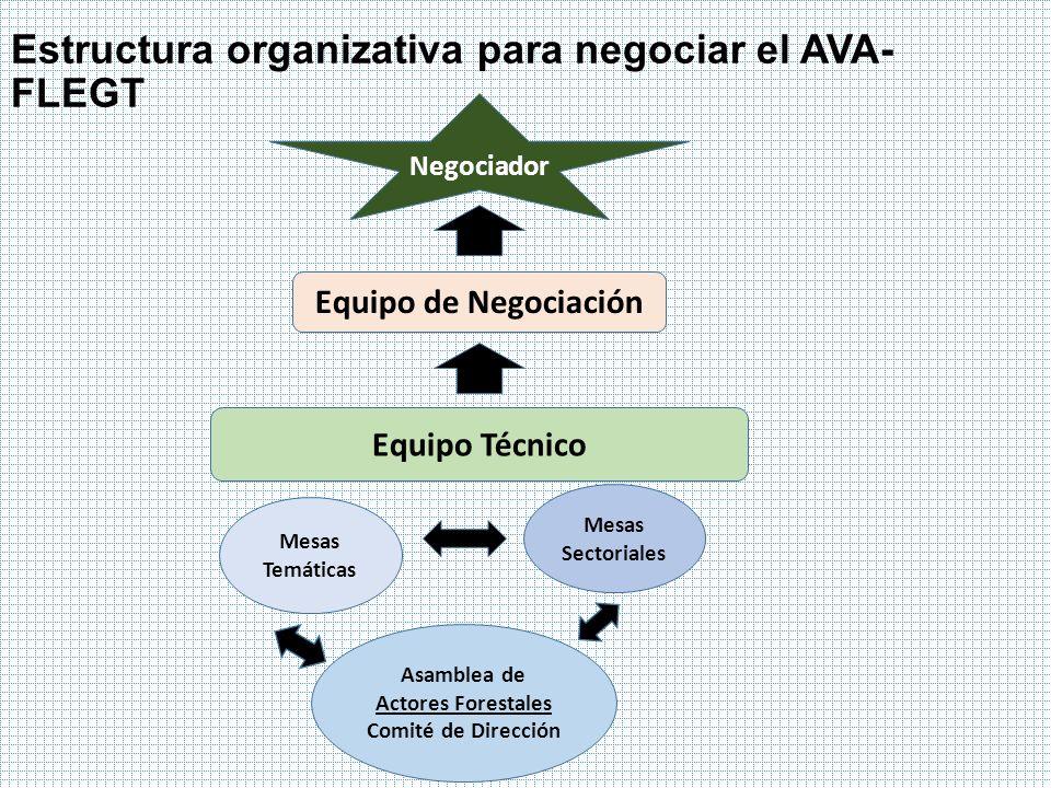 Estructura organizativa para negociar el AVA- FLEGT Negociador Equipo de Negociación Equipo Técnico Asamblea de Actores Forestales Comité de Dirección