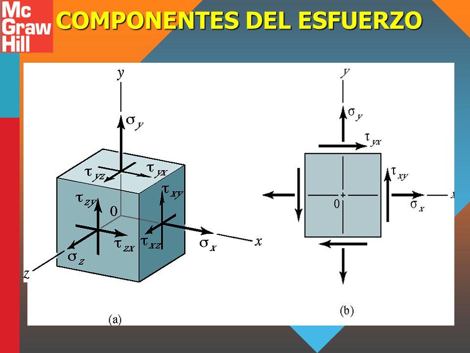 COMPONENTES DEL ESFUERZO
