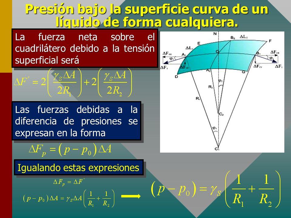 Presión bajo la superficie curva de un líquido de forma cualquiera. En el borde GF actúa una fuerza idéntica Siguiendo el mismo procedimiento se deter