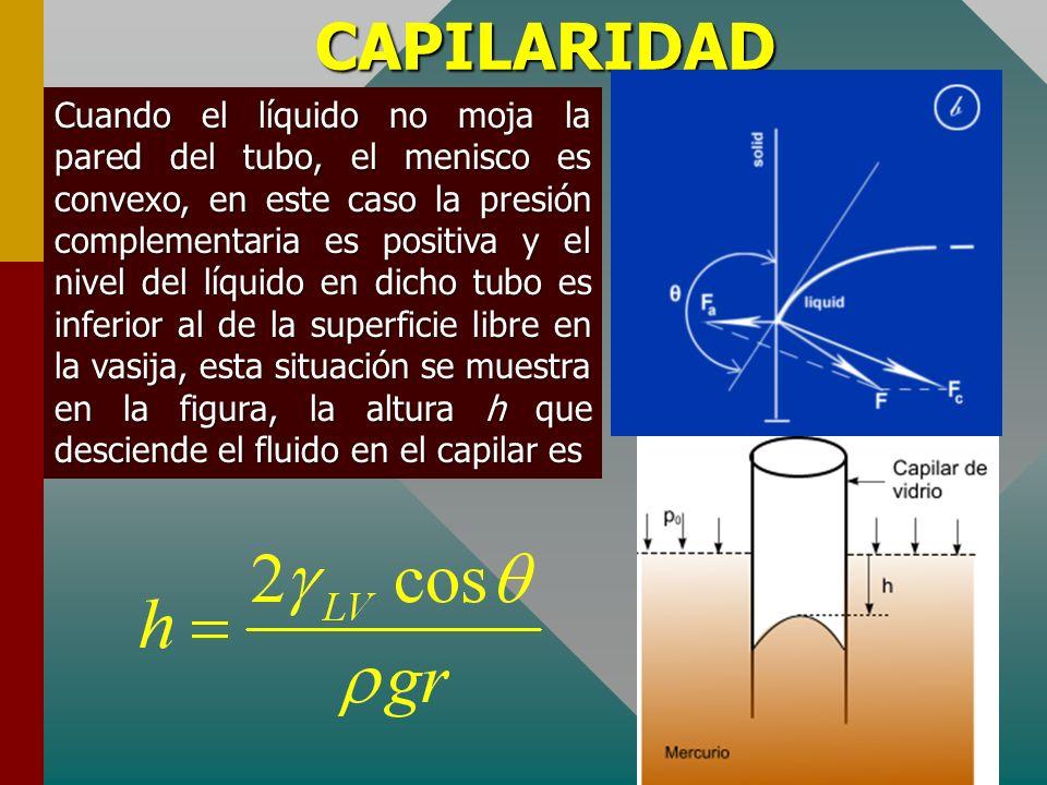CAPILARIDAD La elevación del fluido líquido será tanto mayor cuanto menor es el radio r del capilar. Por esta razón se vuelve notorio el ascenso del l