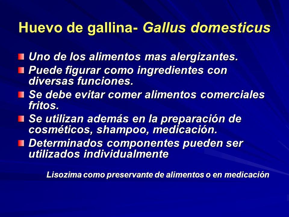 Huevo de gallina- Gallus domesticus Uno de los alimentos mas alergizantes. Puede figurar como ingredientes con diversas funciones. Se debe evitar come