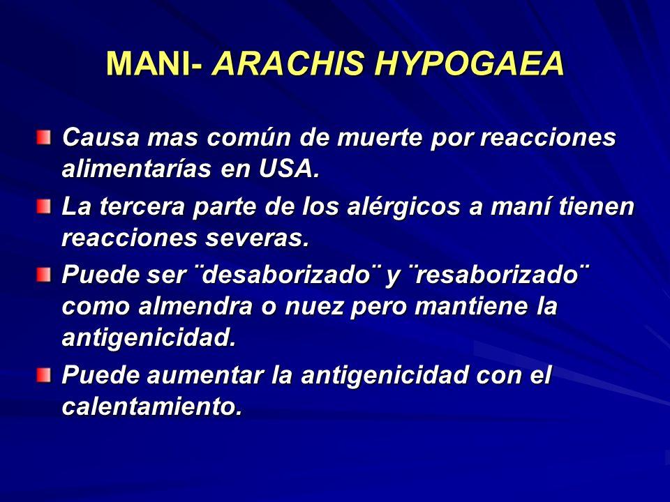MANI- ARACHIS HYPOGAEA Causa mas común de muerte por reacciones alimentarías en USA. La tercera parte de los alérgicos a maní tienen reacciones severa