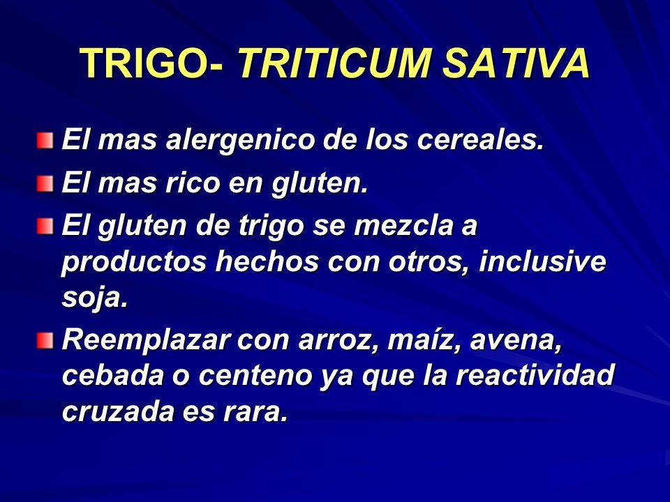 TRIGO- TRITICUM SATIVA El mas alergenico de los cereales. El mas rico en gluten. El gluten de trigo se mezcla a productos hechos con otros, inclusive