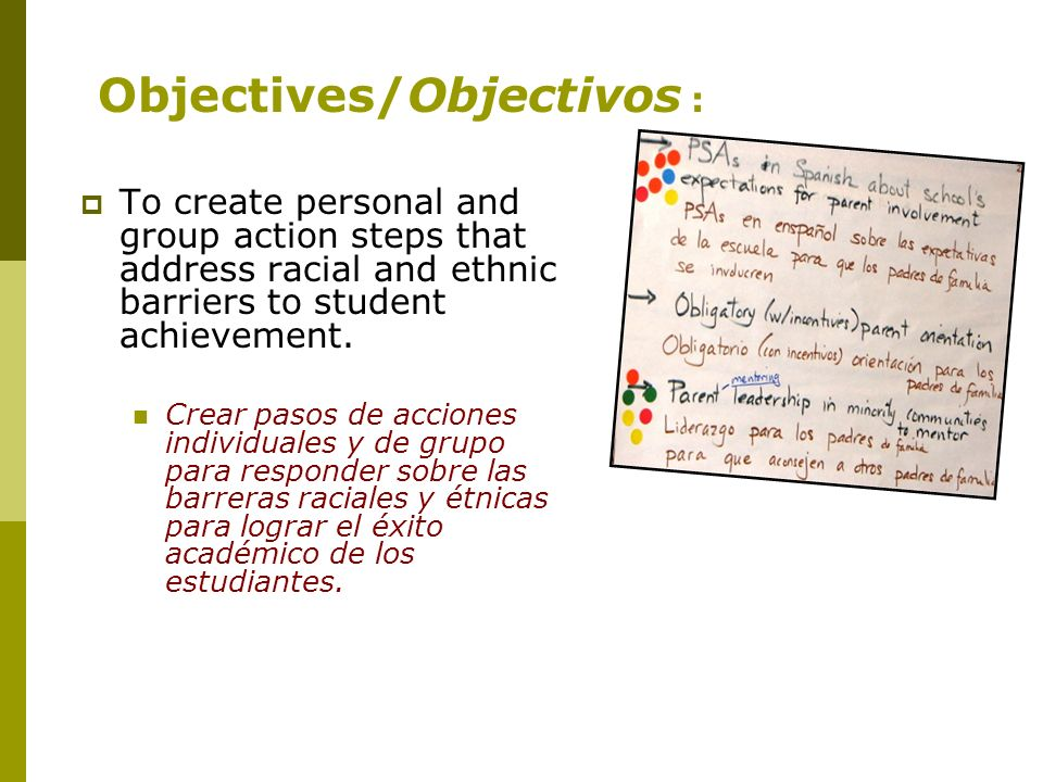 To create personal and group action steps that address racial and ethnic barriers to student achievement.