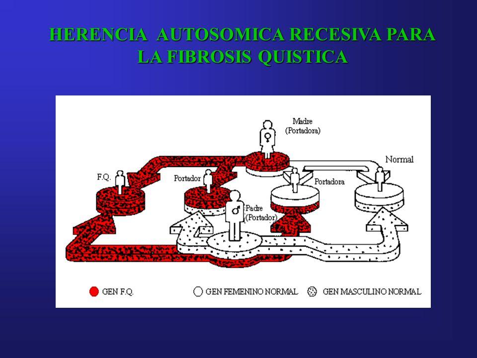 HERENCIA AUTOSOMICA RECESIVA PARA LA FIBROSIS QUISTICA