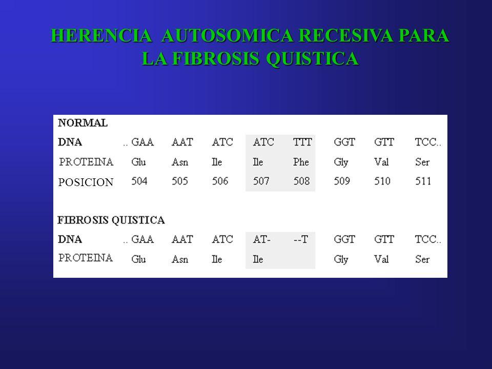 HERENCIA AUTOSOMICA RECESIVA PARA LA FIBROSIS QUISTICA POSICION