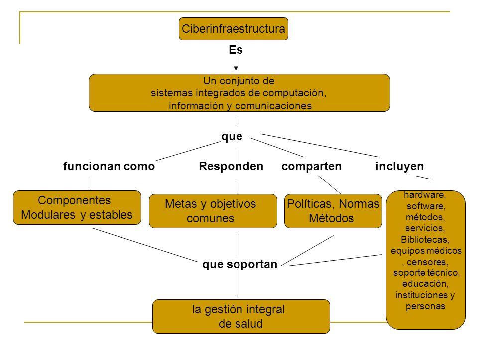 Ciberinfraestructura Es Un conjunto de sistemas integrados de computación, información y comunicaciones la gestión integral de salud Metas y objetivos