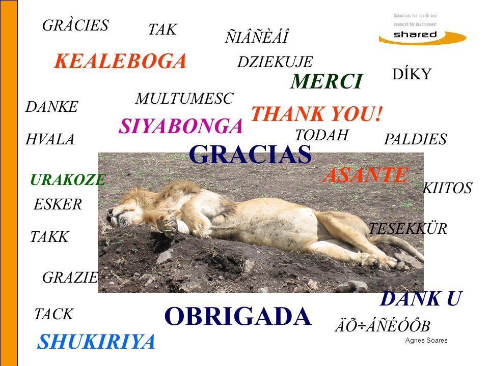 Agnes Soares SIYABONGA KEALEBOGA ASANTE SHUKIRIYA OBRIGADA GRACIAS DANK U THANK YOU! MERCI URAKOZE TESEKKÜR GRAZIE ÑIÂÑÈÁÎ DANKE PALDIES TAKK DZIEKUJE