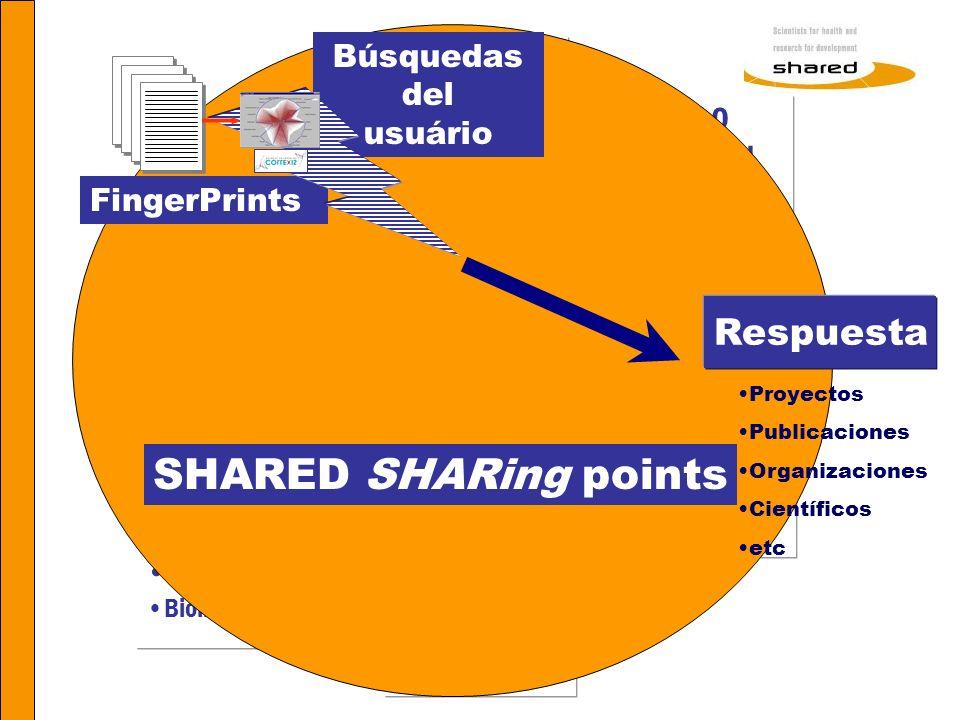 Agnes Soares Los diferentes niveles de información en SHARED 321321