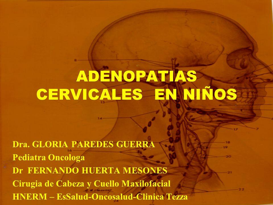 ADENOPATIAS CERVICALES EN NIÑOS Dra. GLORIA PAREDES GUERRA Pediatra Oncologa Dr FERNANDO HUERTA MESONES Cirugia de Cabeza y Cuello Maxilofacial HNERM