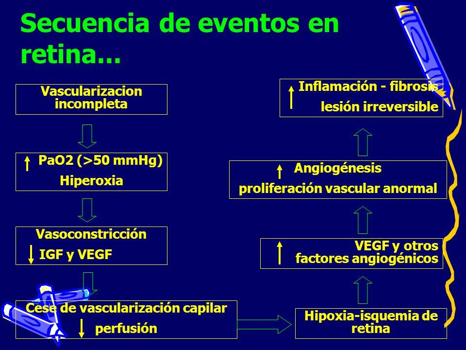 Vascularizacion incompleta Angiogénesis proliferación vascular anormal VEGF y otros factores angiogénicos Hipoxia-isquemia de retina Cese de vasculari