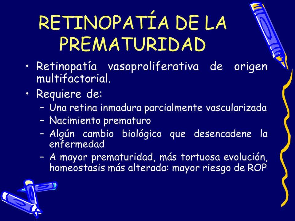RETINOPATÍA DE LA PREMATURIDAD Retinopatía vasoproliferativa de origen multifactorial. Requiere de: –Una retina inmadura parcialmente vascularizada –N