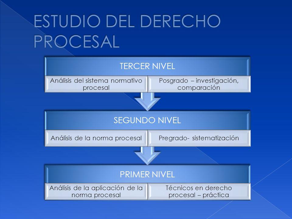 PRIMER NIVEL Análisis de la aplicación de la norma procesal Técnicos en derecho procesal – práctica SEGUNDO NIVEL Análisis de la norma procesalPregrad