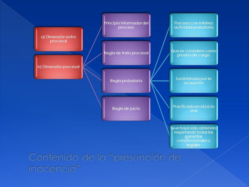 a) Dimensión extra procesal b) Dimensión procesal Principio informador del proceso Regla de trato procesalRegla probatoria Proceso con mínima activida
