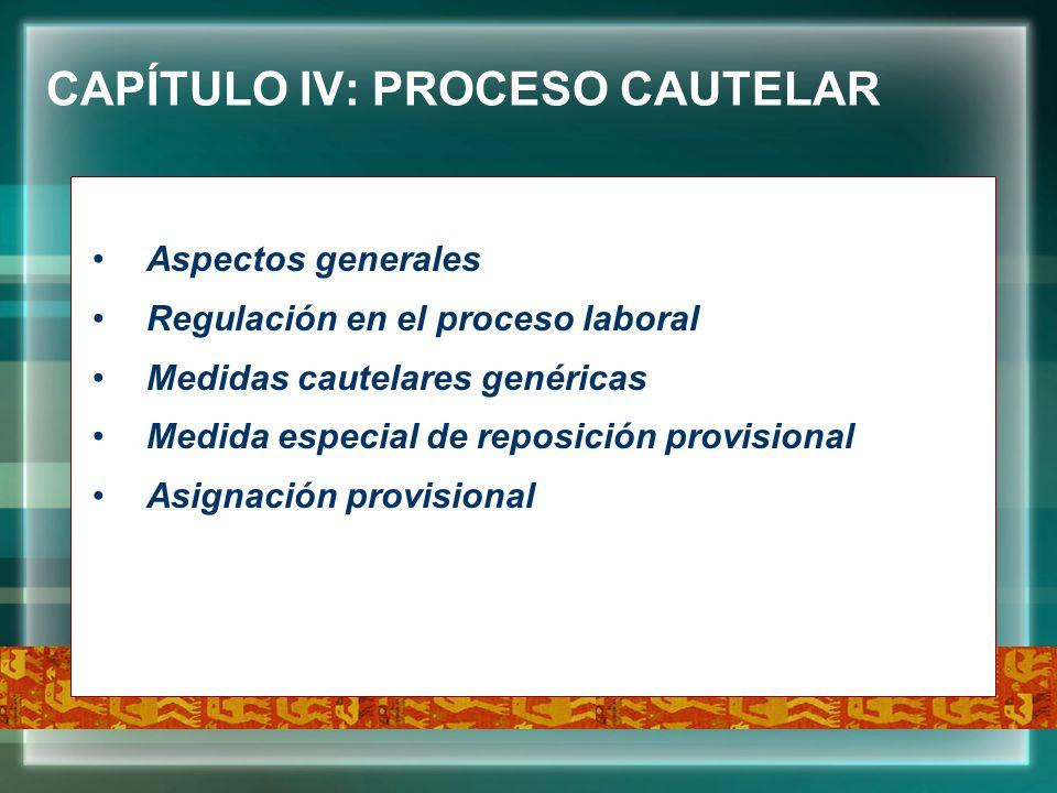 CAPÍTULO IV: PROCESO CAUTELAR Aspectos generales Regulación en el proceso laboral Medidas cautelares genéricas Medida especial de reposición provision