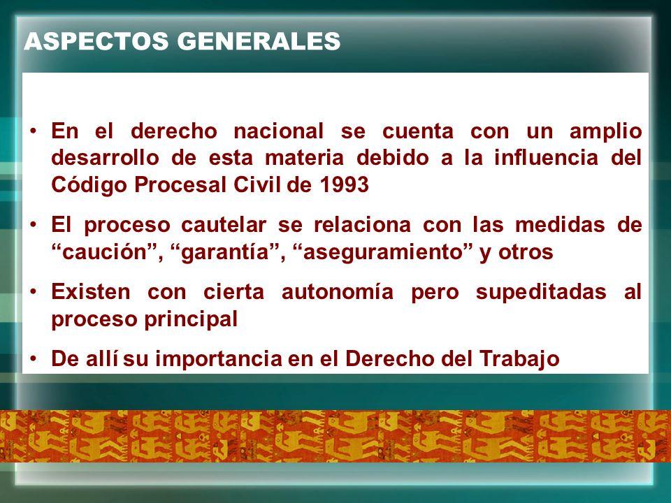 ASPECTOS GENERALES En el derecho nacional se cuenta con un amplio desarrollo de esta materia debido a la influencia del Código Procesal Civil de 1993