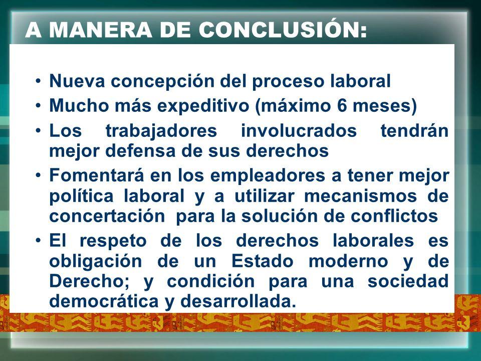 A MANERA DE CONCLUSIÓN: Nueva concepción del proceso laboral Mucho más expeditivo (máximo 6 meses) Los trabajadores involucrados tendrán mejor defensa