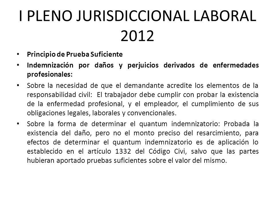 I PLENO JURISDICCIONAL LABORAL 2012 Principio de Prueba Suficiente Indemnización por daños y perjuicios derivados de enfermedades profesionales: Sobre