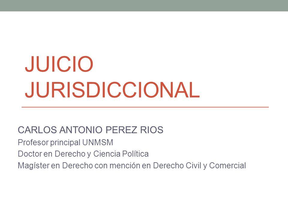 JUICIO JURISDICCIONAL CARLOS ANTONIO PEREZ RIOS Profesor principal UNMSM Doctor en Derecho y Ciencia Política Magíster en Derecho con mención en Derec