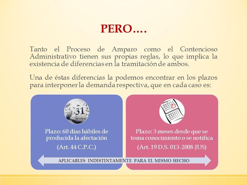 PERO…. Tanto el Proceso de Amparo como el Contencioso Administrativo tienen sus propias reglas, lo que implica la existencia de diferencias en la tram