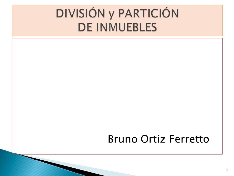 Bruno Ortiz Ferretto 1