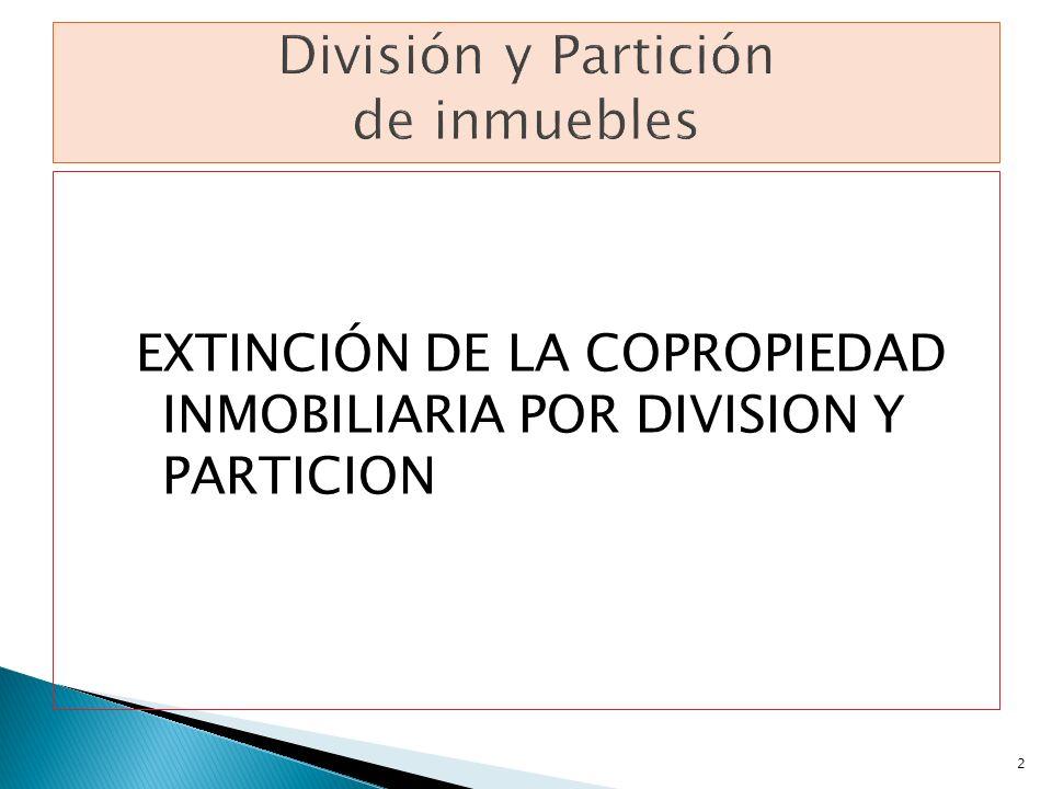 EXTINCIÓN DE LA COPROPIEDAD INMOBILIARIA POR DIVISION Y PARTICION 2