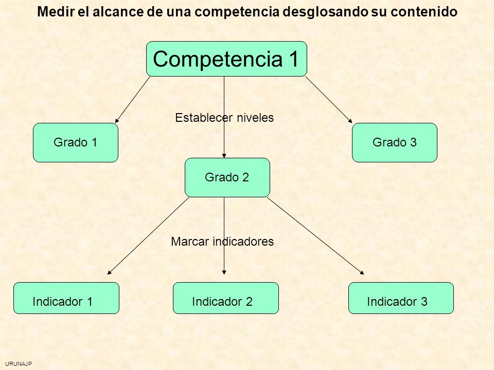 URUNAJP La evaluación de competencias Cada competencia, distintas dimensiones: p.