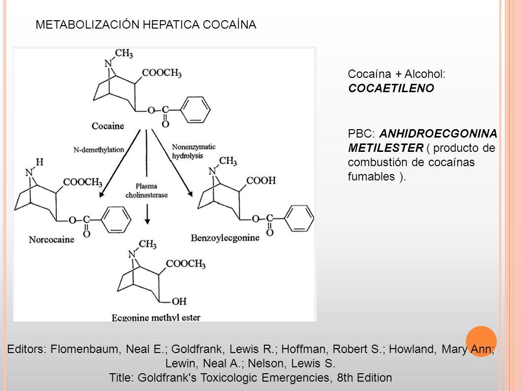 METABOLIZACIÓN HEPATICA COCAÍNA Editors: Flomenbaum, Neal E.; Goldfrank, Lewis R.; Hoffman, Robert S.; Howland, Mary Ann; Lewin, Neal A.; Nelson, Lewi