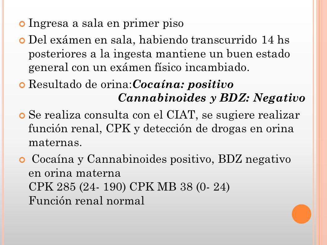 INGESTA ACCIDENTAL Casos Reportados: 2 lactantes de 9 meses con CTCG, pos ingesta de cocaína.