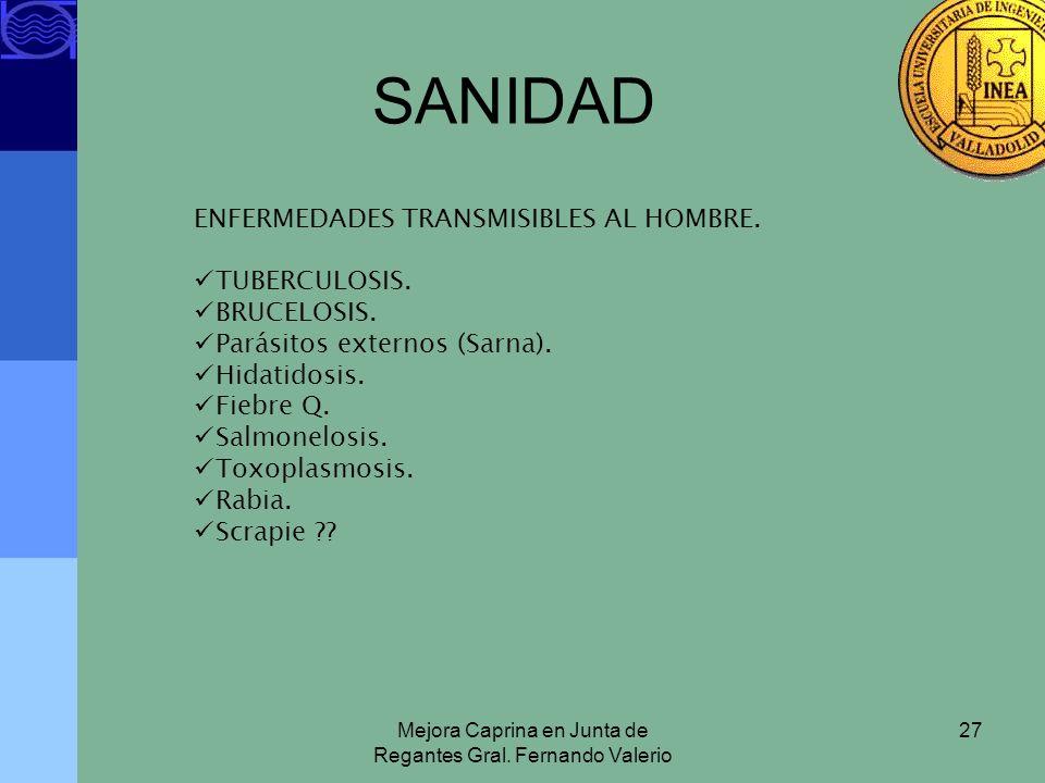 Mejora Caprina en Junta de Regantes Gral. Fernando Valerio 27 SANIDAD ENFERMEDADES TRANSMISIBLES AL HOMBRE. TUBERCULOSIS. BRUCELOSIS. Parásitos extern