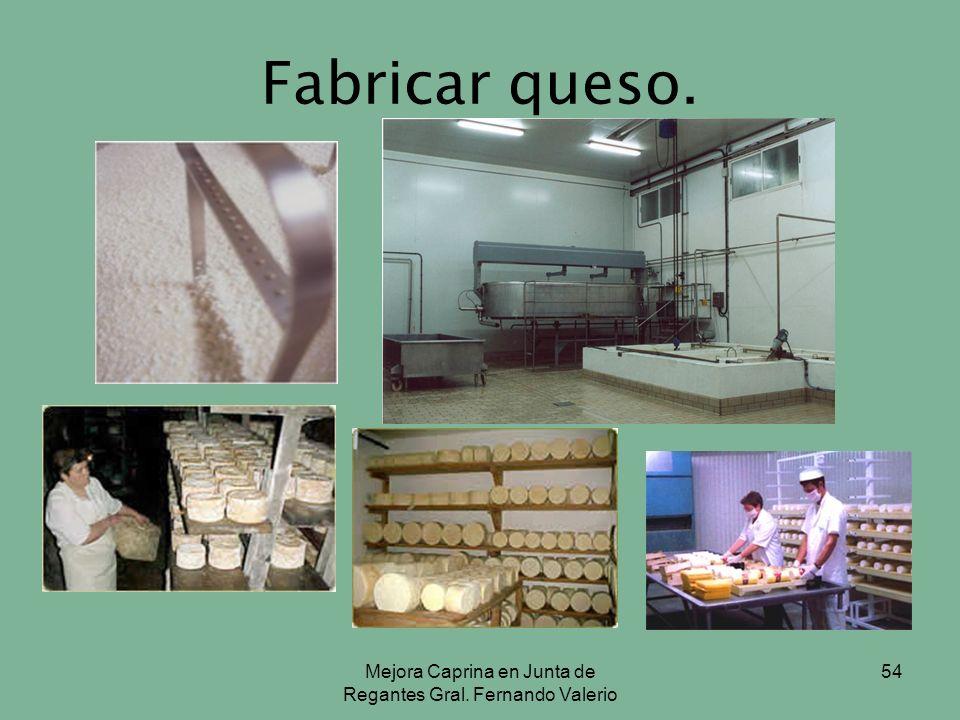 Mejora Caprina en Junta de Regantes Gral. Fernando Valerio 54 Fabricar queso.