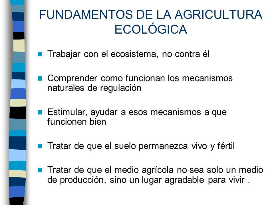 FUNDAMENTOS DE LA AGRICULTURA ECOLÓGICA Trabajar con el ecosistema, no contra él Comprender como funcionan los mecanismos naturales de regulación Esti