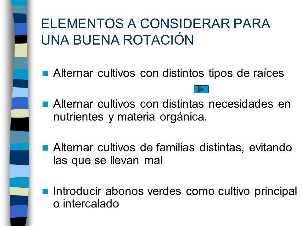 Alternar cultivos con distintos tipos de raíces Alternar cultivos con distintas necesidades en nutrientes y materia orgánica. Alternar cultivos de fam