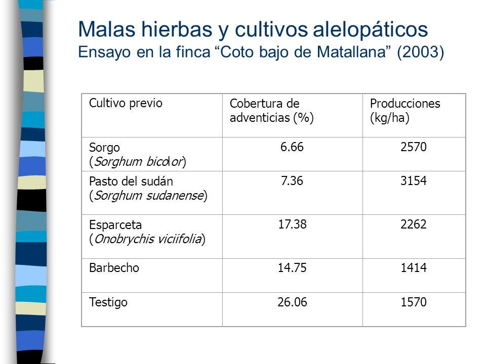 Malas hierbas y cultivos alelopáticos Ensayo en la finca Coto bajo de Matallana (2003) Cultivo previoCobertura de adventicias (%) Producciones (kg/ha)