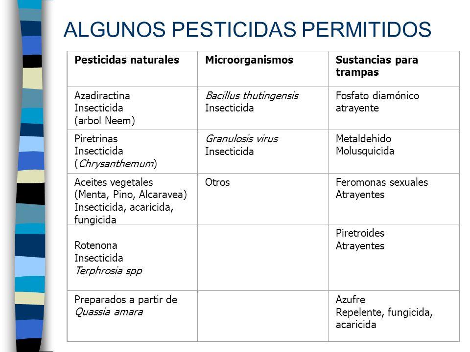 ALGUNOS PESTICIDAS PERMITIDOS Pesticidas naturalesMicroorganismosSustancias para trampas Azadiractina Insecticida (arbol Neem) Bacillus thutingensis I