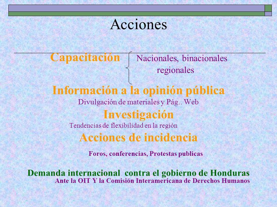 Acciones Capacitación Nacionales, binacionales regionales Información a la opinión pública Divulgación de materiales y Pág.. Web Investigación Tendenc