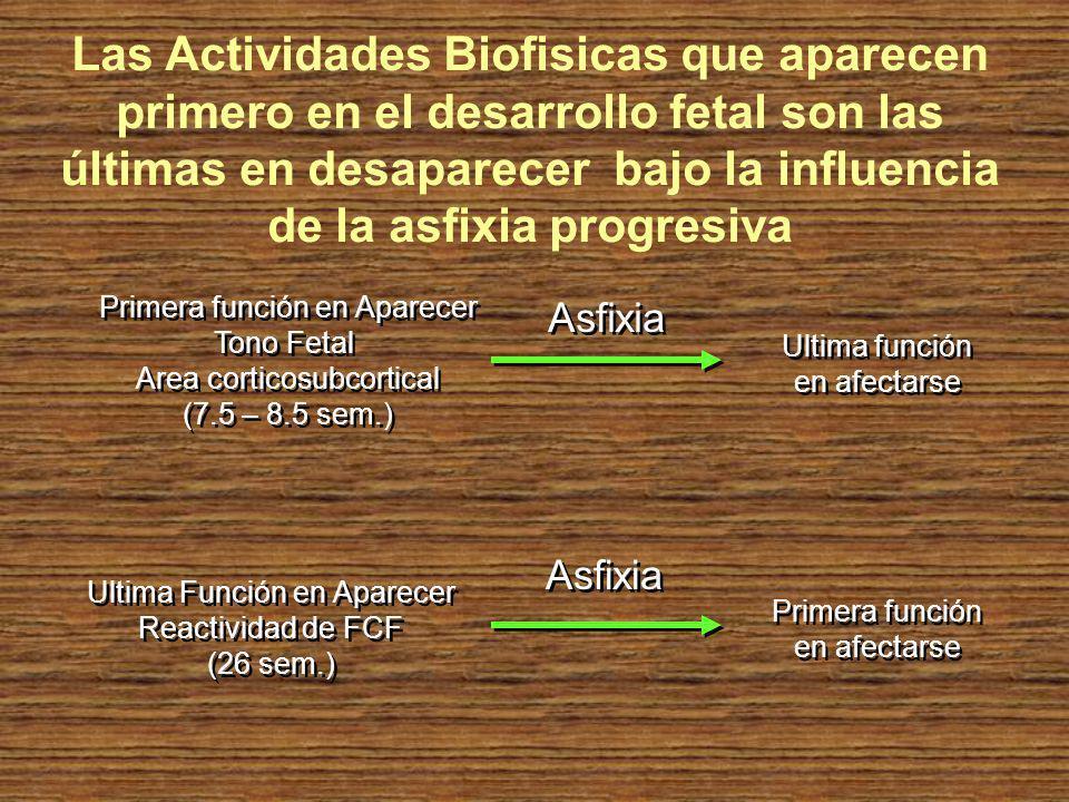 Primera función en Aparecer Tono Fetal Area corticosubcortical (7.5 – 8.5 sem.) Primera función en Aparecer Tono Fetal Area corticosubcortical (7.5 –