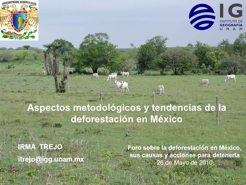 Aspectos metodológicos y tendencias de la deforestación en México IRMA TREJO itrejo@igg.unam.mx Foro sobre la deforestación en México, sus causas y ac