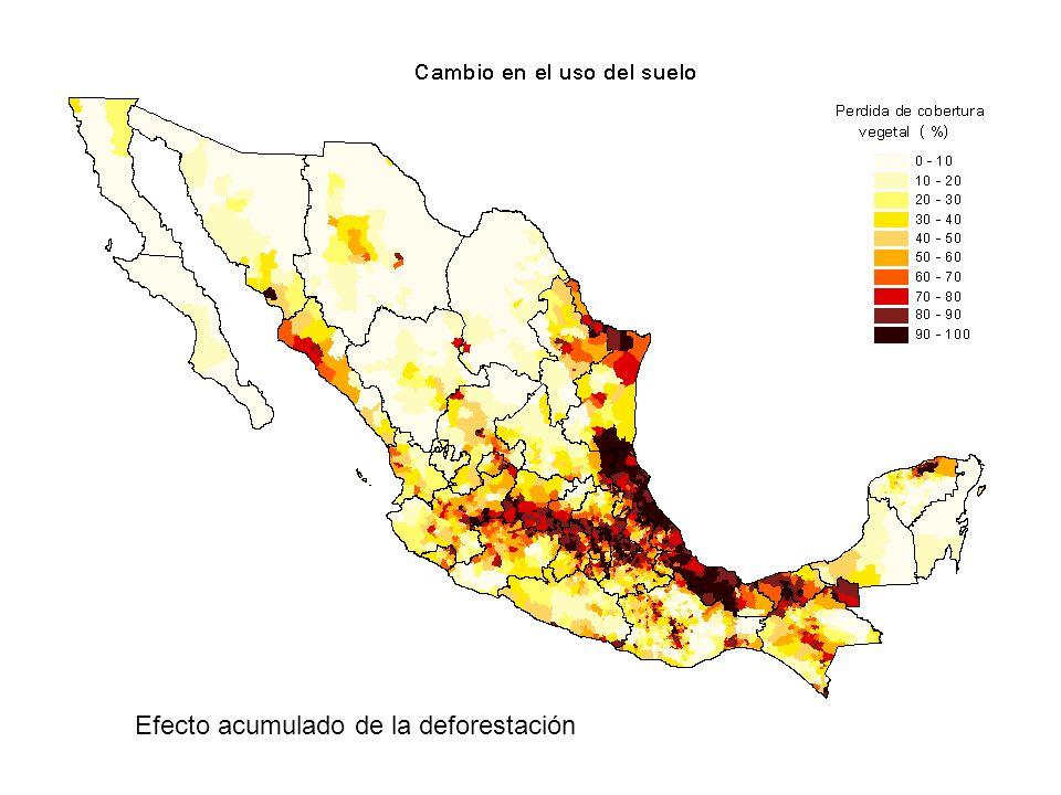 Efecto acumulado de la deforestación