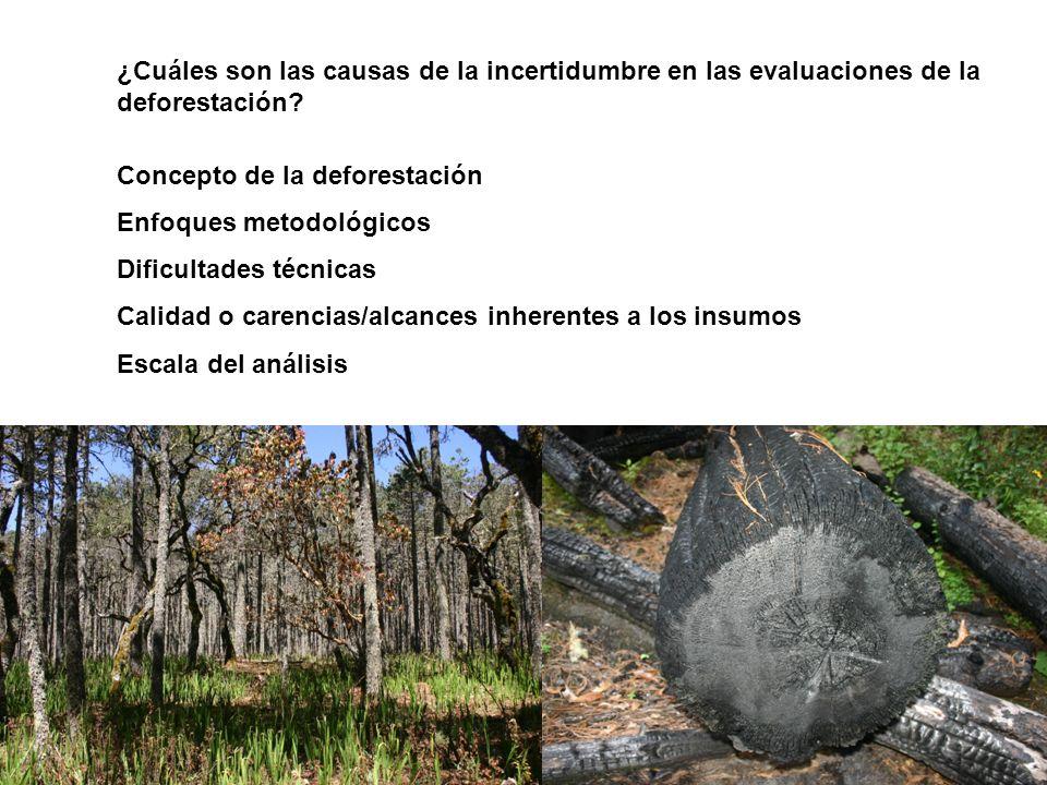 ¿Cuáles son las causas de la incertidumbre en las evaluaciones de la deforestación? Concepto de la deforestación Enfoques metodológicos Dificultades t