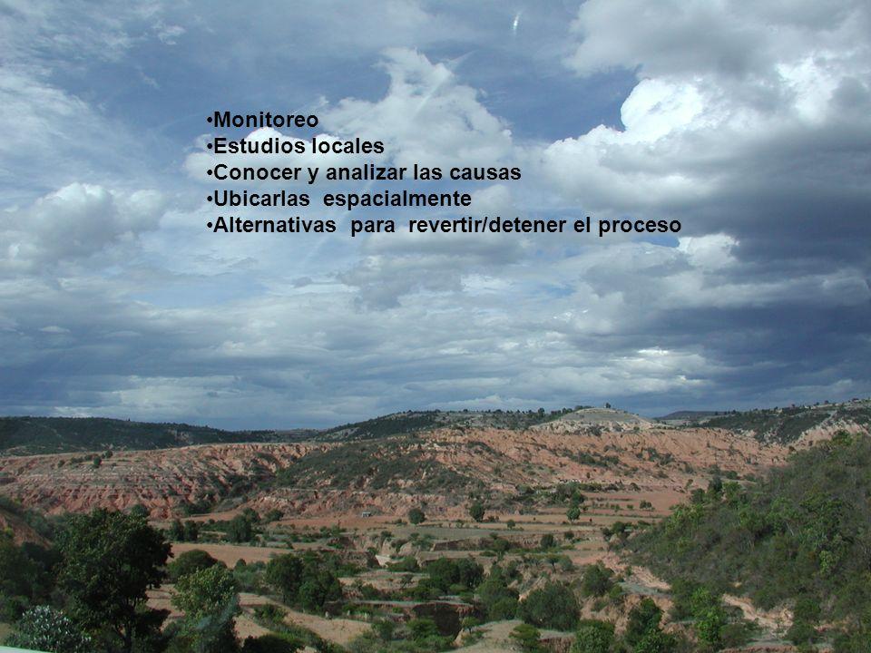 Monitoreo Estudios locales Conocer y analizar las causas Ubicarlas espacialmente Alternativas para revertir/detener el proceso
