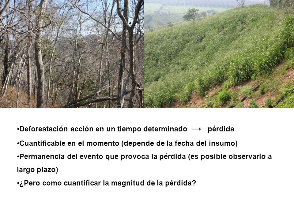 Deforestación acción en un tiempo determinado pérdida Cuantificable en el momento (depende de la fecha del insumo) Permanencia del evento que provoca